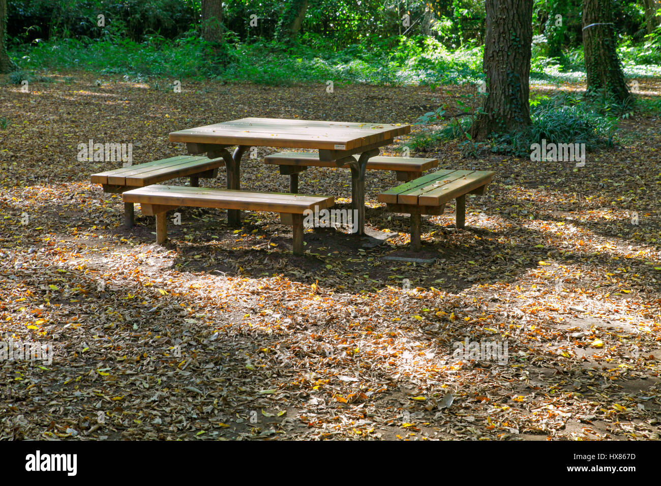 Tavolo Giardino Con Panche.Un Tavolo Con Panche In Boschi Di Jindai Giardino Botanico A Chofu