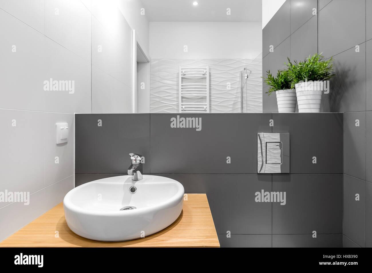 Bagno moderno interno con circolare bianca con lavabo e grande