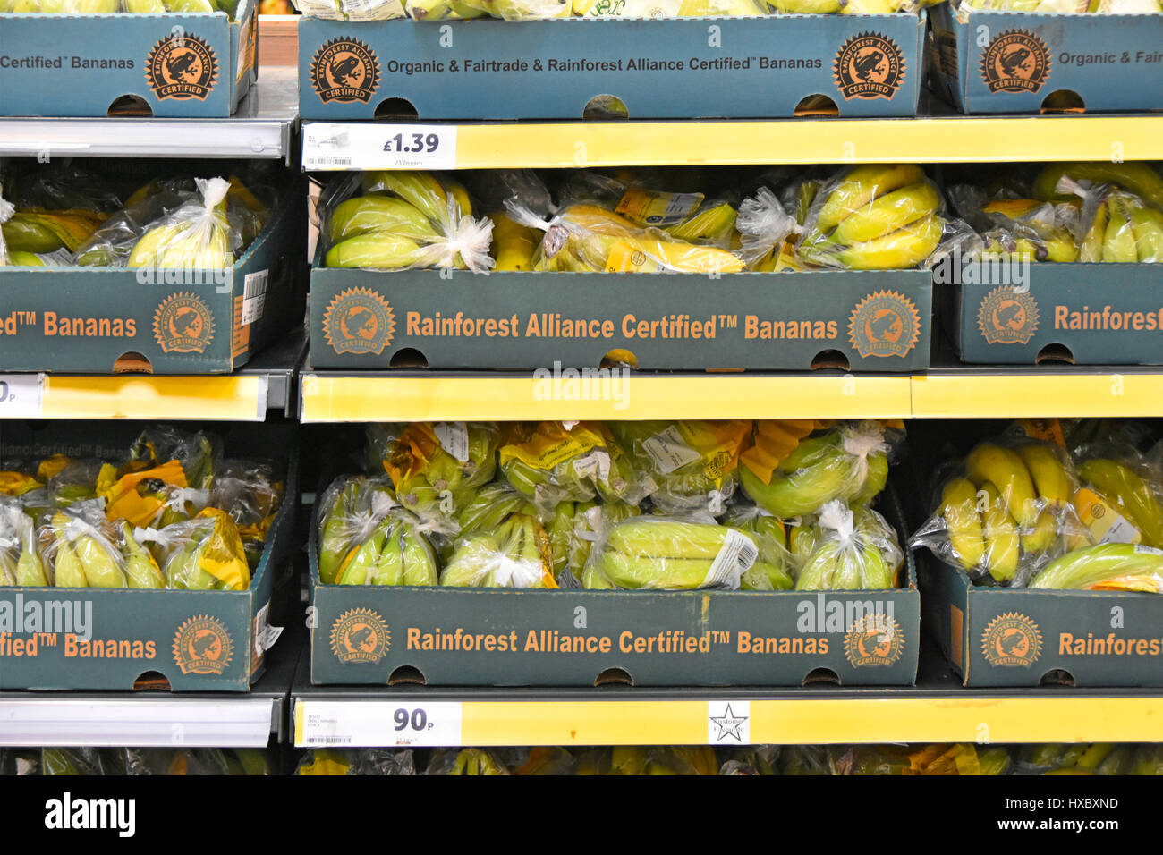 Organic & Fair Trade & Rainforest Alliance Certified le banane e il logo in sacchetti di plastica in scatole Immagini Stock