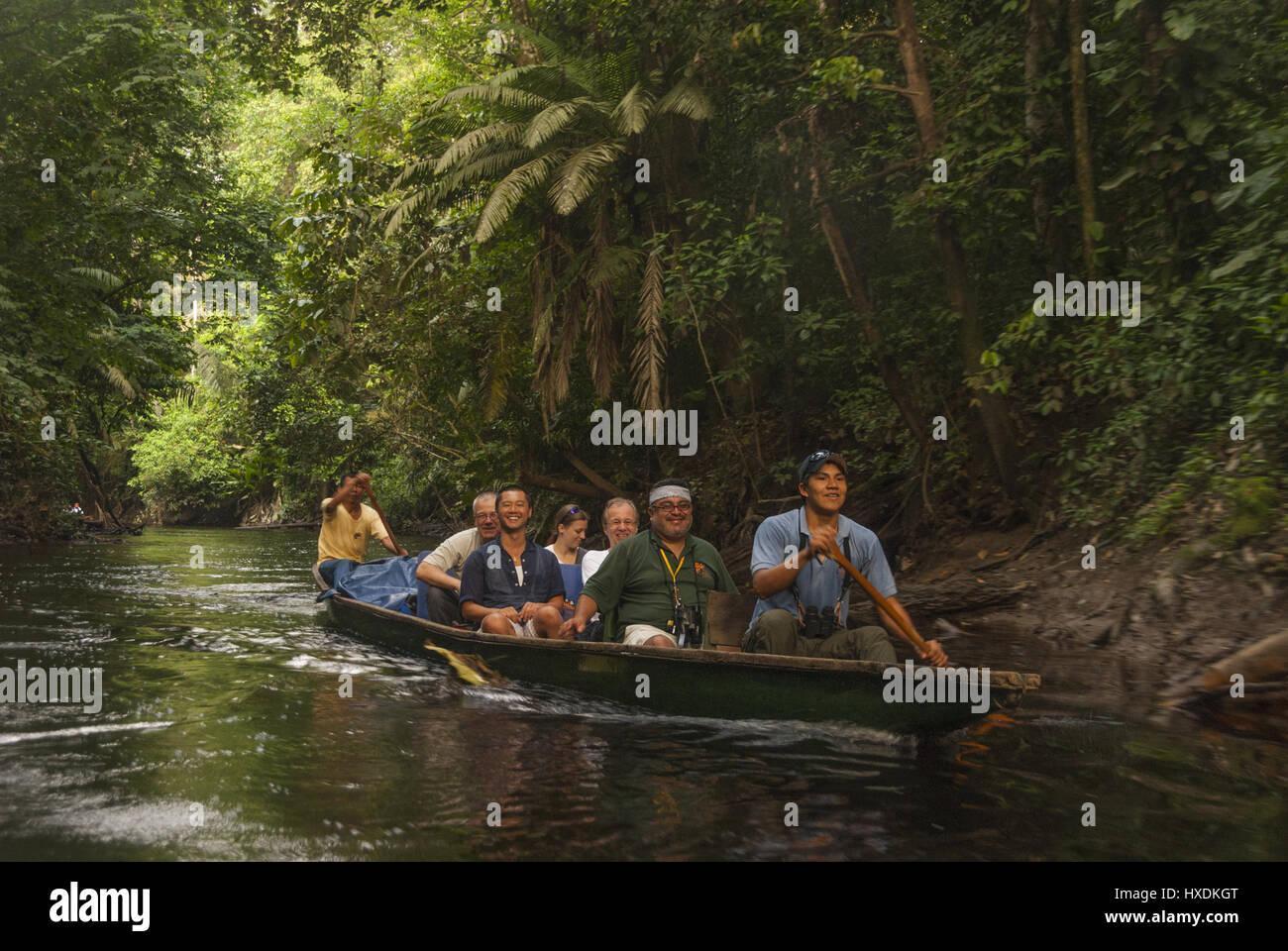 Ecuador, Yasuni NP, Piroque esplorare la foresta Immagini Stock