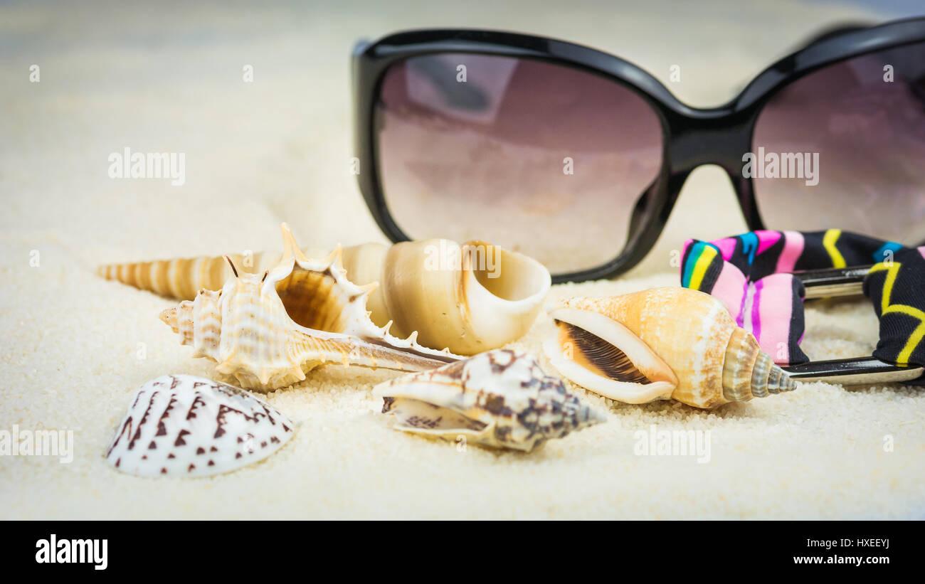 Costume Da Bagno Conchiglia : Vacanze estate tema con conchiglie di mare occhiali da sole e