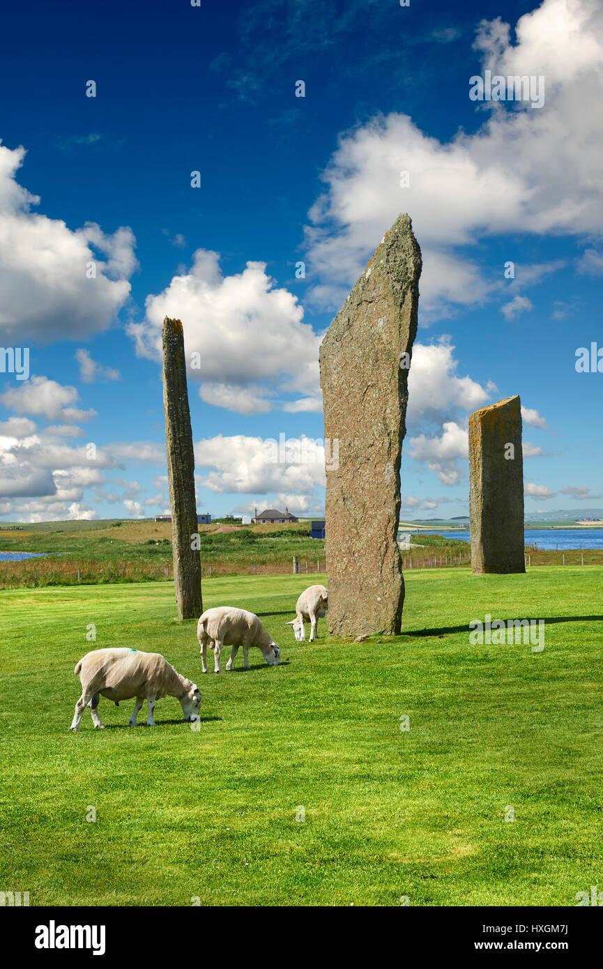 Neolitico pietre permanente di Stenness, Isola di Orkney, Scozia Immagini Stock