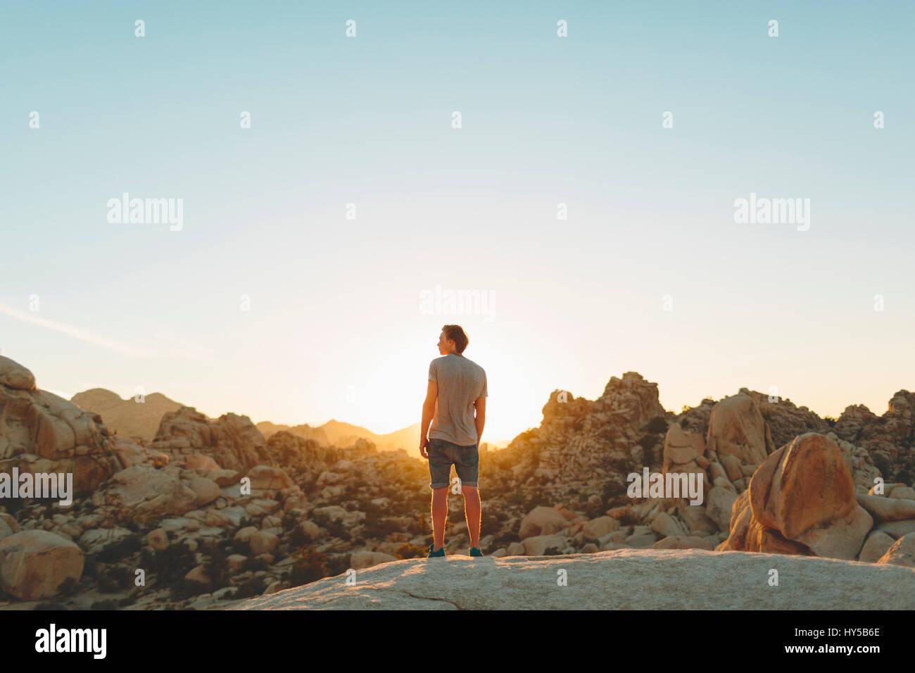 Stati Uniti, California, un uomo guarda vista nel parco nazionale di Joshua Tree Immagini Stock