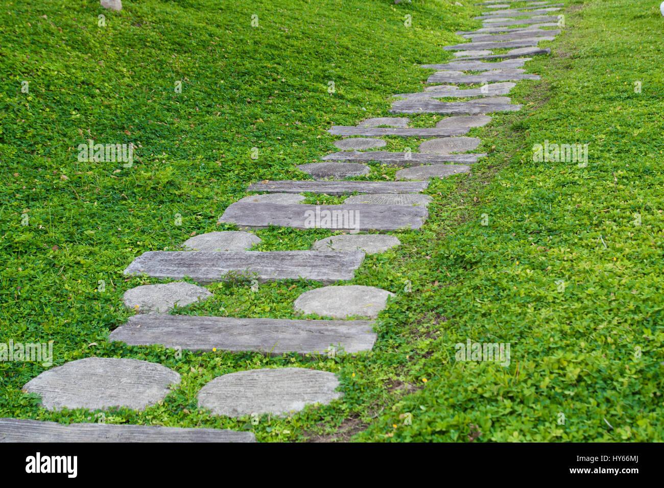 Modello di quadrati di pavimento di cemento piastrelle con erba
