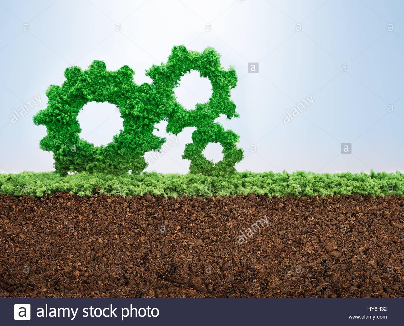 La crescita aziendale concetto con erba che cresce in forma di ruote dentate Immagini Stock