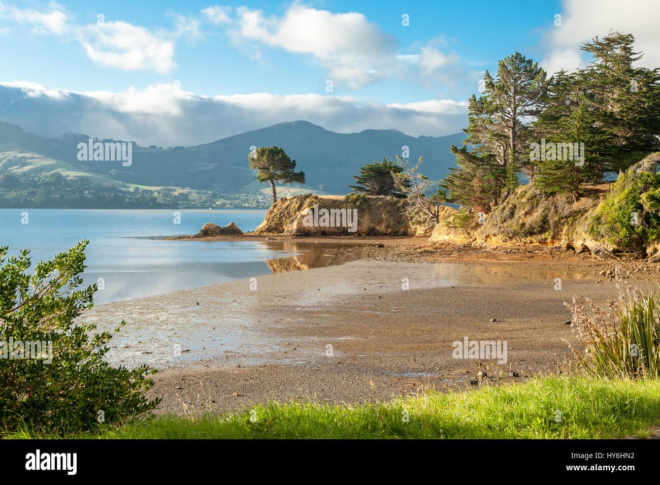 Tramonto al Porto di Otago a est di Dunedin, Nuova Zelanda Foto Stock
