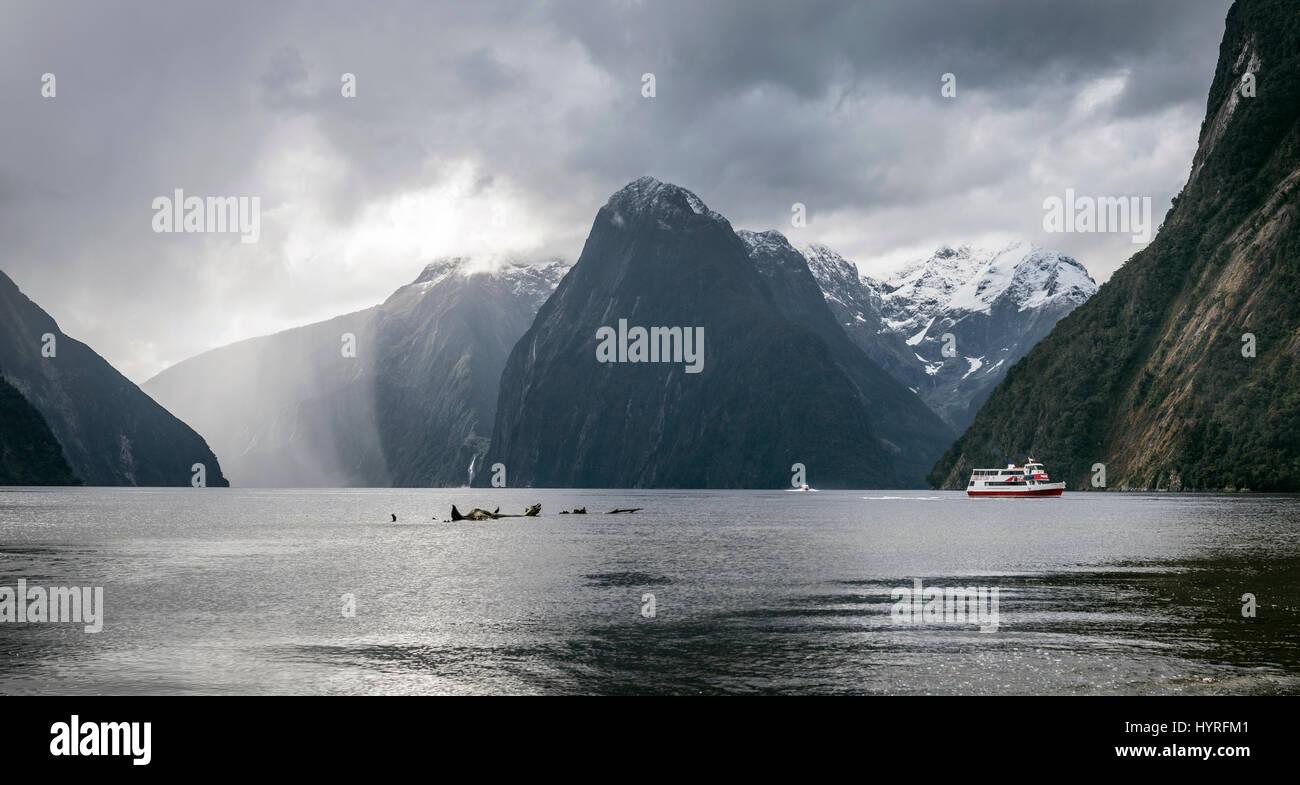 Imbarcazione turistica rainy mood, Milford Sound, Parco Nazionale di Fiordland, Te Anau, Regione del Southland, Immagini Stock