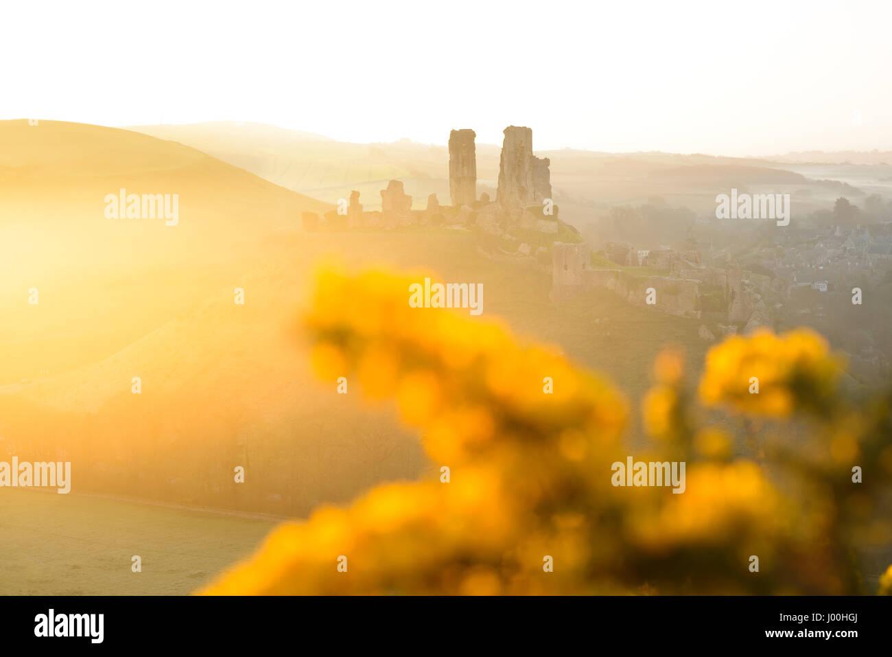 Corfe Castle, Dorset, Regno Unito. Dal 8 aprile 2017. Gloriosa misty crisp tramonto sull'Isola di Purbeck e Immagini Stock