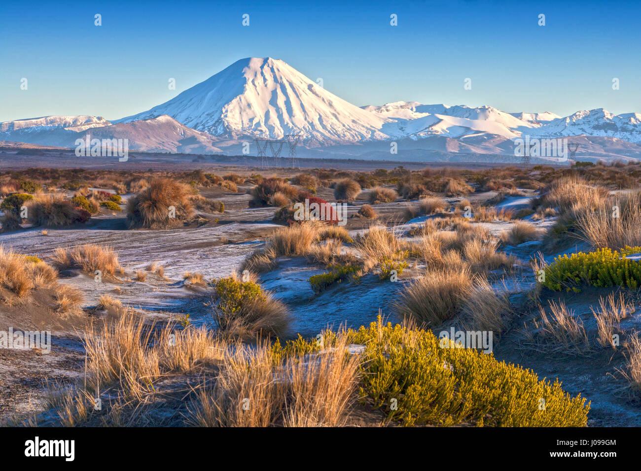 Il monte Ngauruhoe e il deserto Rangipo, parco nazionale di Tongariro, Nuova Zelanda Immagini Stock
