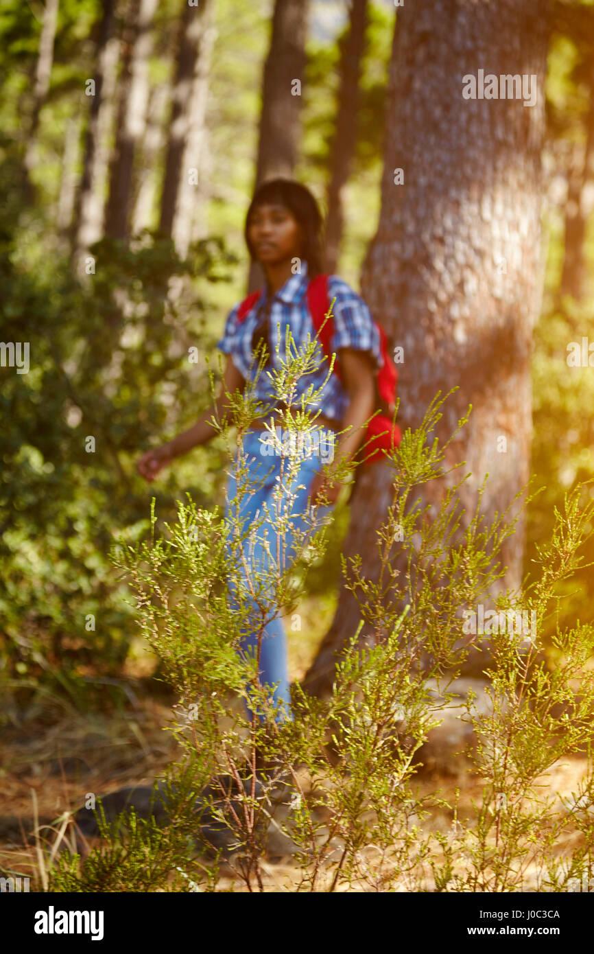 Giovane donna, escursionismo attraverso la foresta, Cape Town, Sud Africa Immagini Stock
