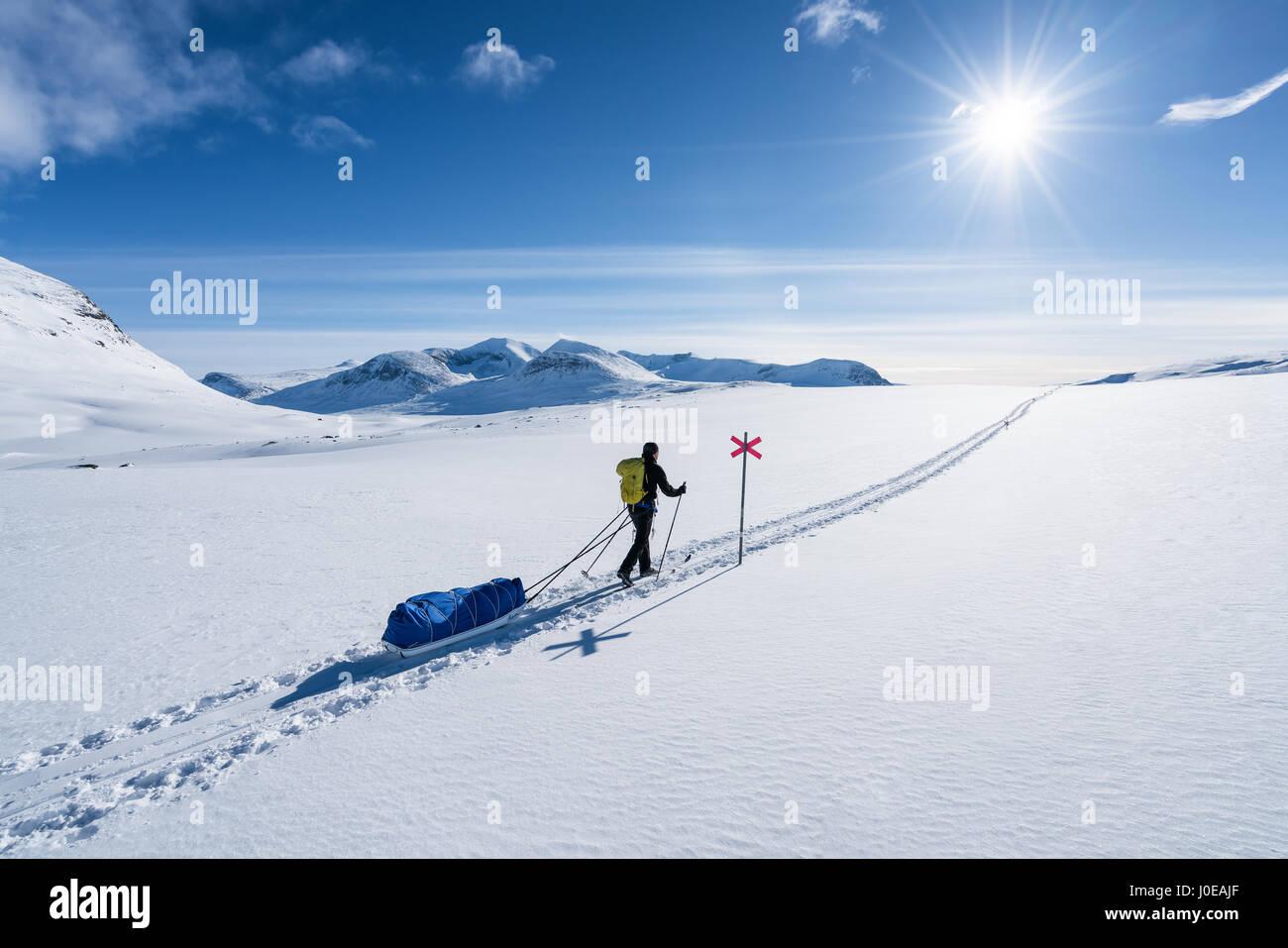 Sci di fondo nella regione di abisko e parco nazionale, Svezia, Europa Immagini Stock