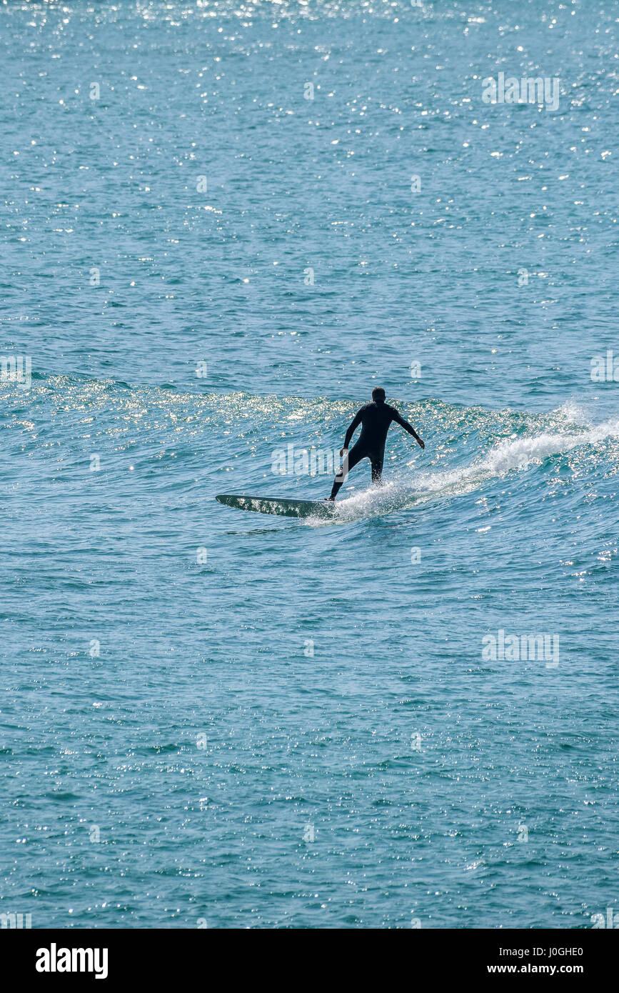 Surfer UK Mare Surf Longboard Hobby acqua attività di svago di equilibrio Newquay Cornwall Immagini Stock