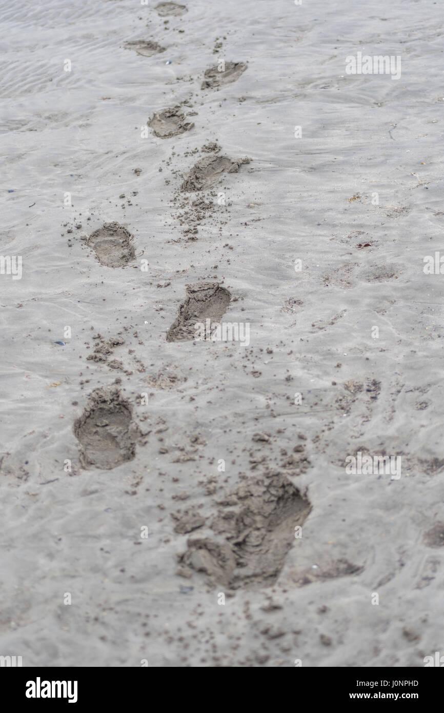 Impronte umane in spiaggia sabbiosa (Par, Cornwall). Possibile metafora per lasciare il vostro marchio o anche delle Immagini Stock
