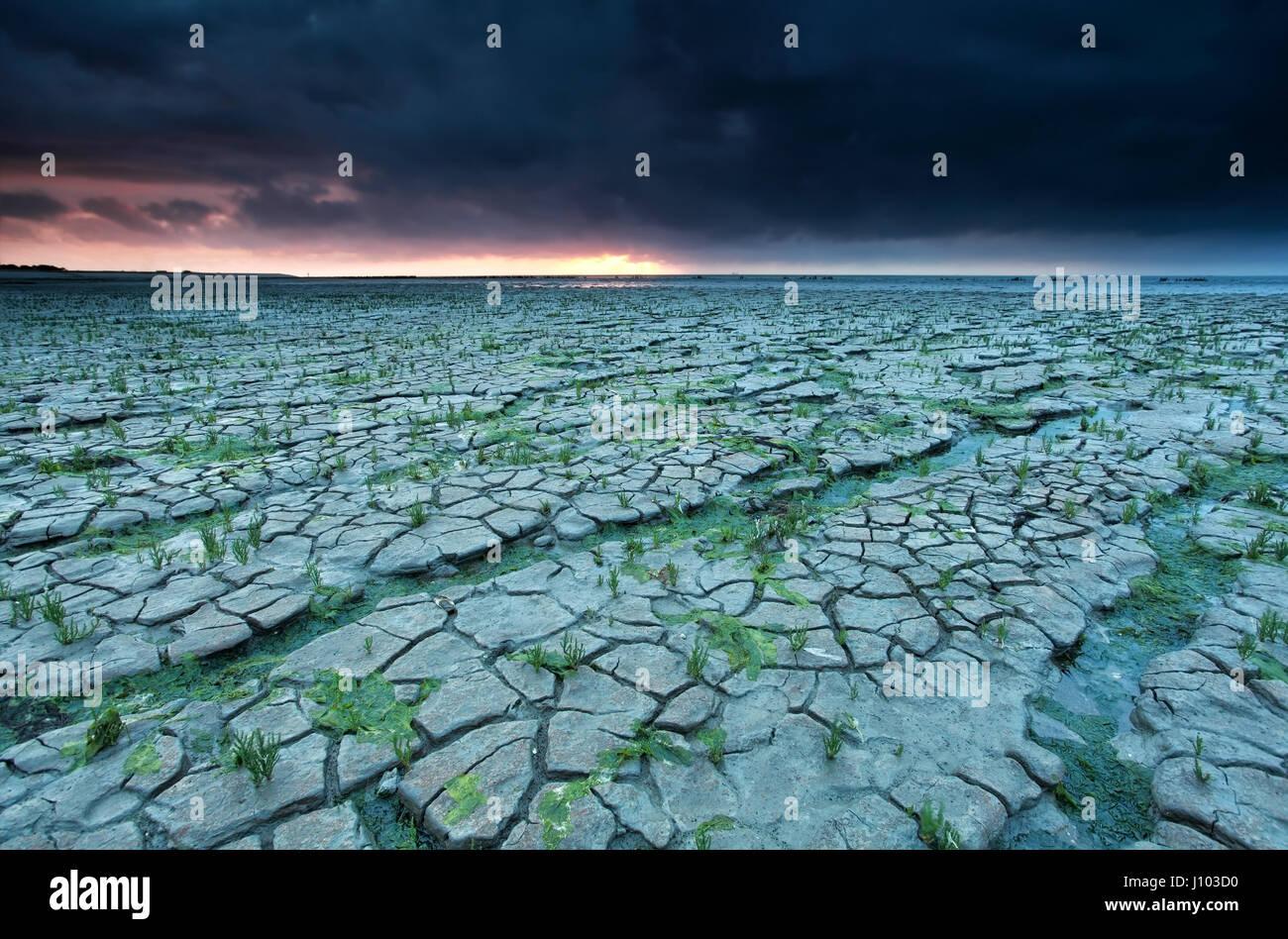 Fango incrinato con la bassa marea, Waddensea, Friesland, Paesi Bassi Immagini Stock
