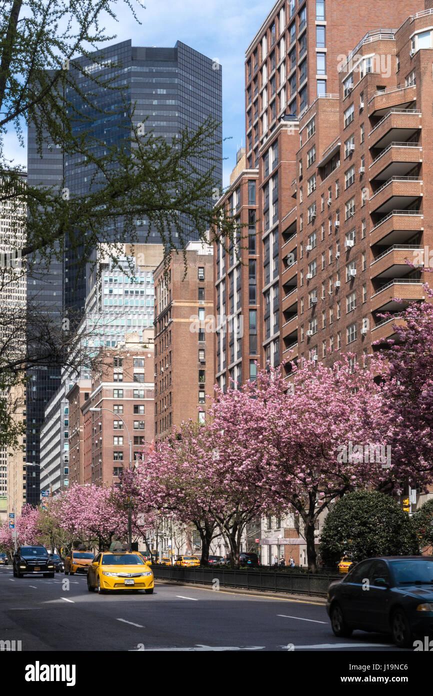 Park Avenue nel centro di Manhattan, New York, Stati Uniti d'America Immagini Stock