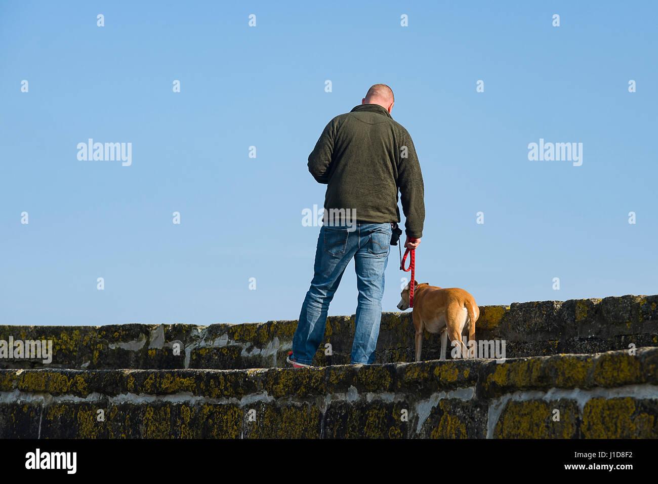 L uomo si prende il suo cane per una passeggiata lungo il molo a Charlestown Harbour, Cornwall, Regno Unito 18/04/2017 Foto Stock