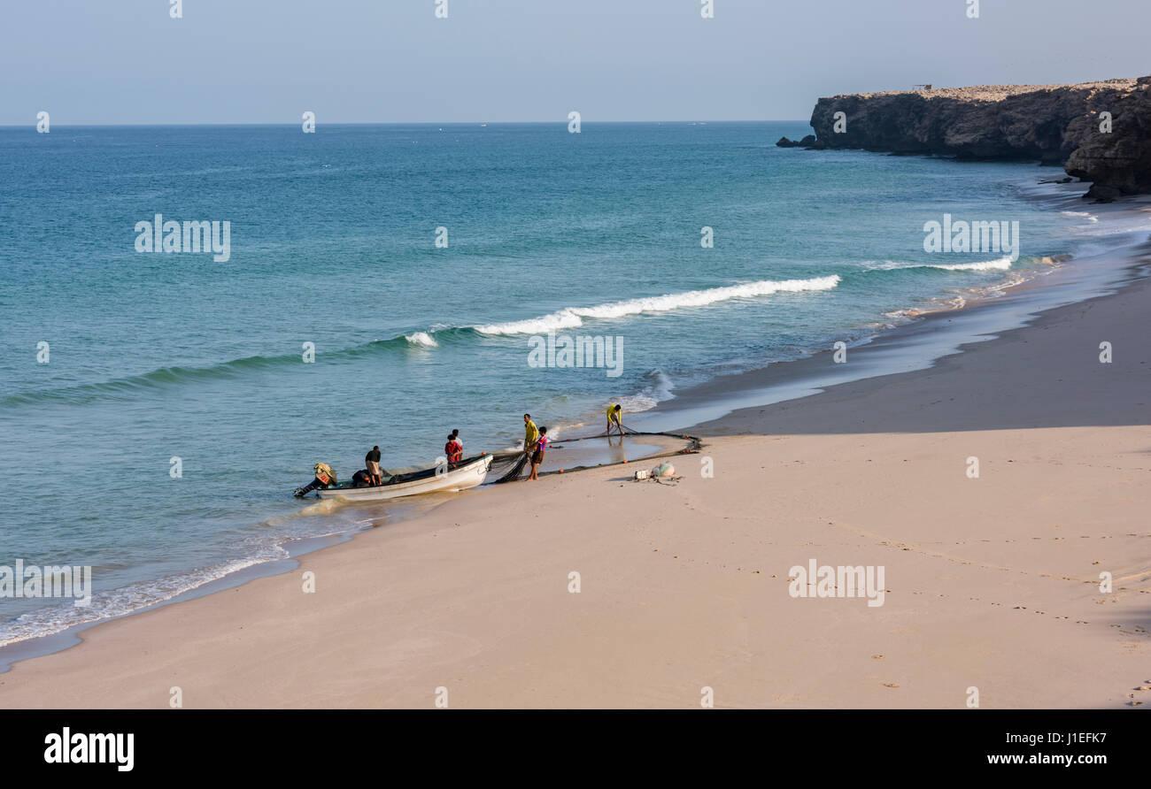 I pescatori tirando la loro rete sulla spiaggia di Ras Al Jinz, Oman Immagini Stock