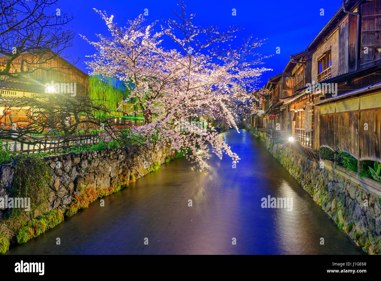 Gion Shirakawa, Kyoto, Giappone in primavera. Immagini Stock