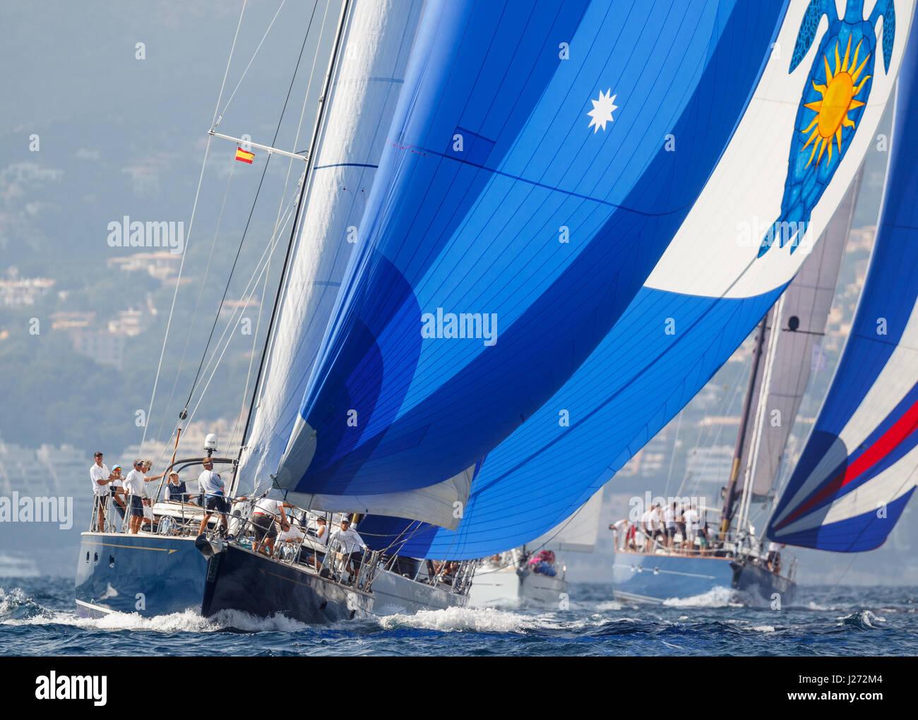 Sailing yacht Race Immagini Stock