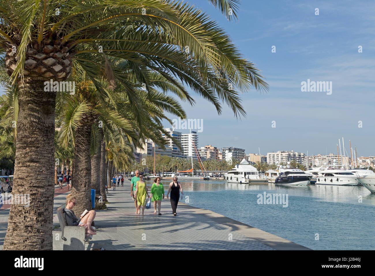 Lungomare di Palma de Mallorca, Spagna Immagini Stock