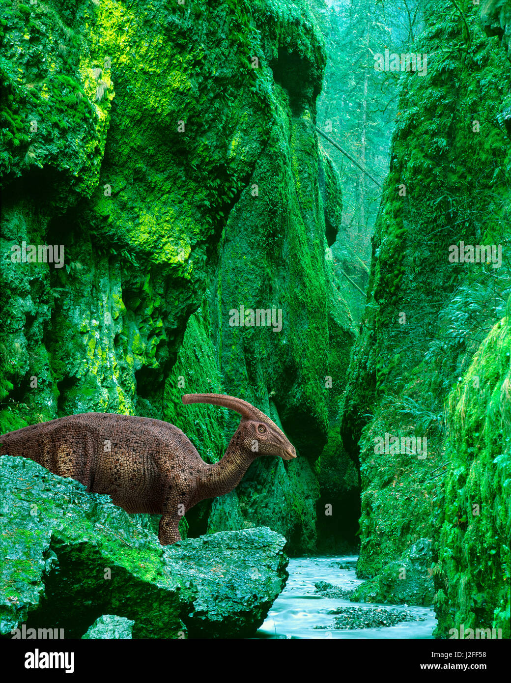 Concetto di dinosauro Parasaurolophus nel canyon preistorico. Credito come: Jim Zuckerman Jaynes / Galleria / DanitaDelimont.com Immagini Stock