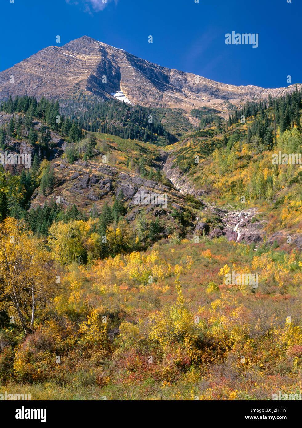Stati Uniti d'America, Montana, il Parco Nazionale di Glacier, cieli Peak aumenta al di sopra di fall-piste Immagini Stock