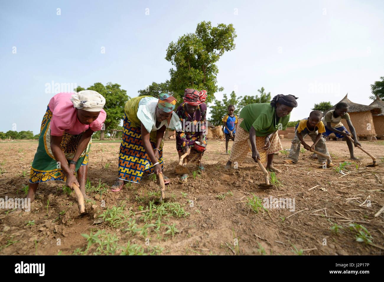 Le donne e i bambini che lavorano un campo con le zappe, Toeghin village, Oubritenga provincia, Plateau regione Immagini Stock