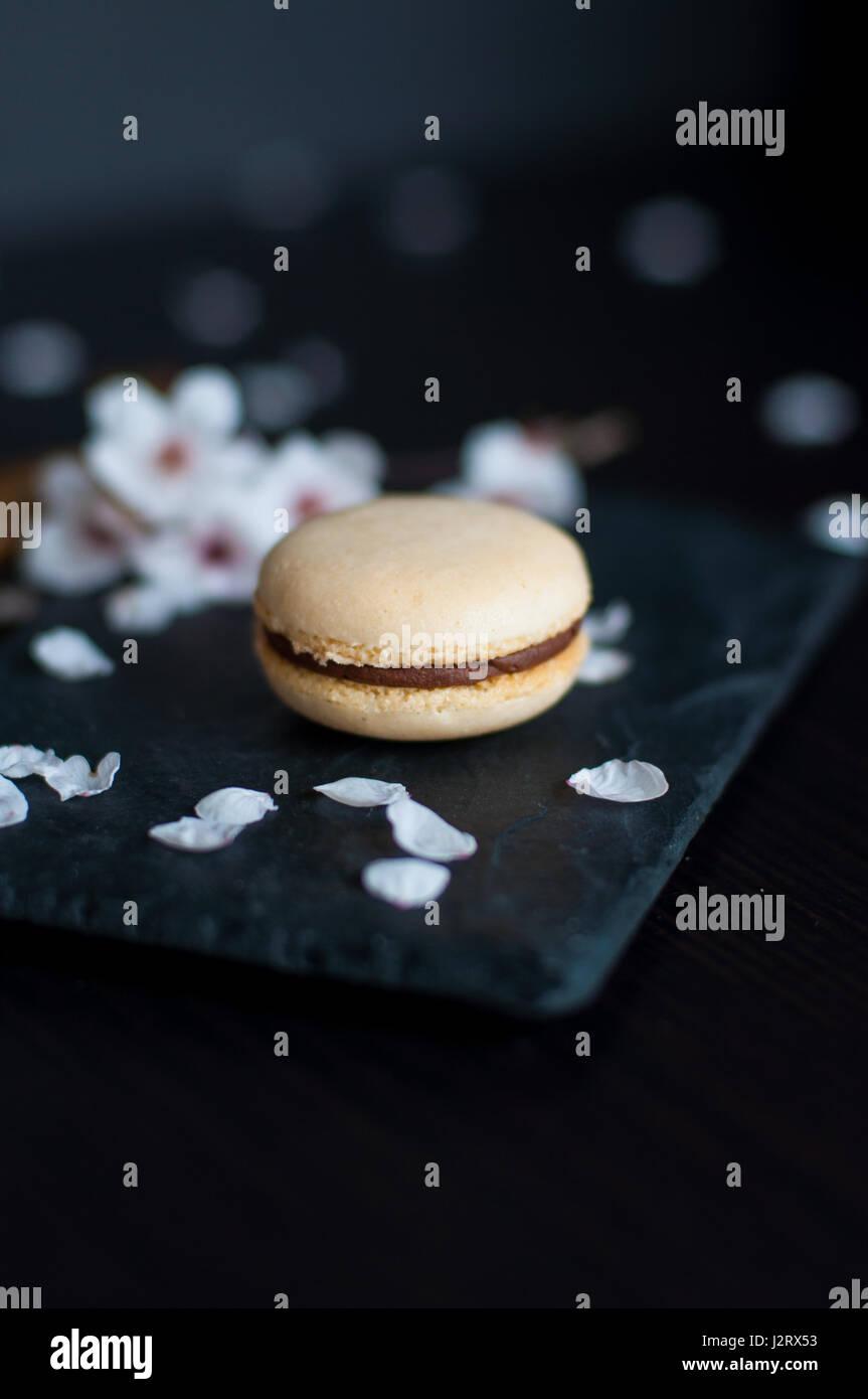 Amaretto singolo con crema di cioccolato decorato con ciottoli bianchi Immagini Stock