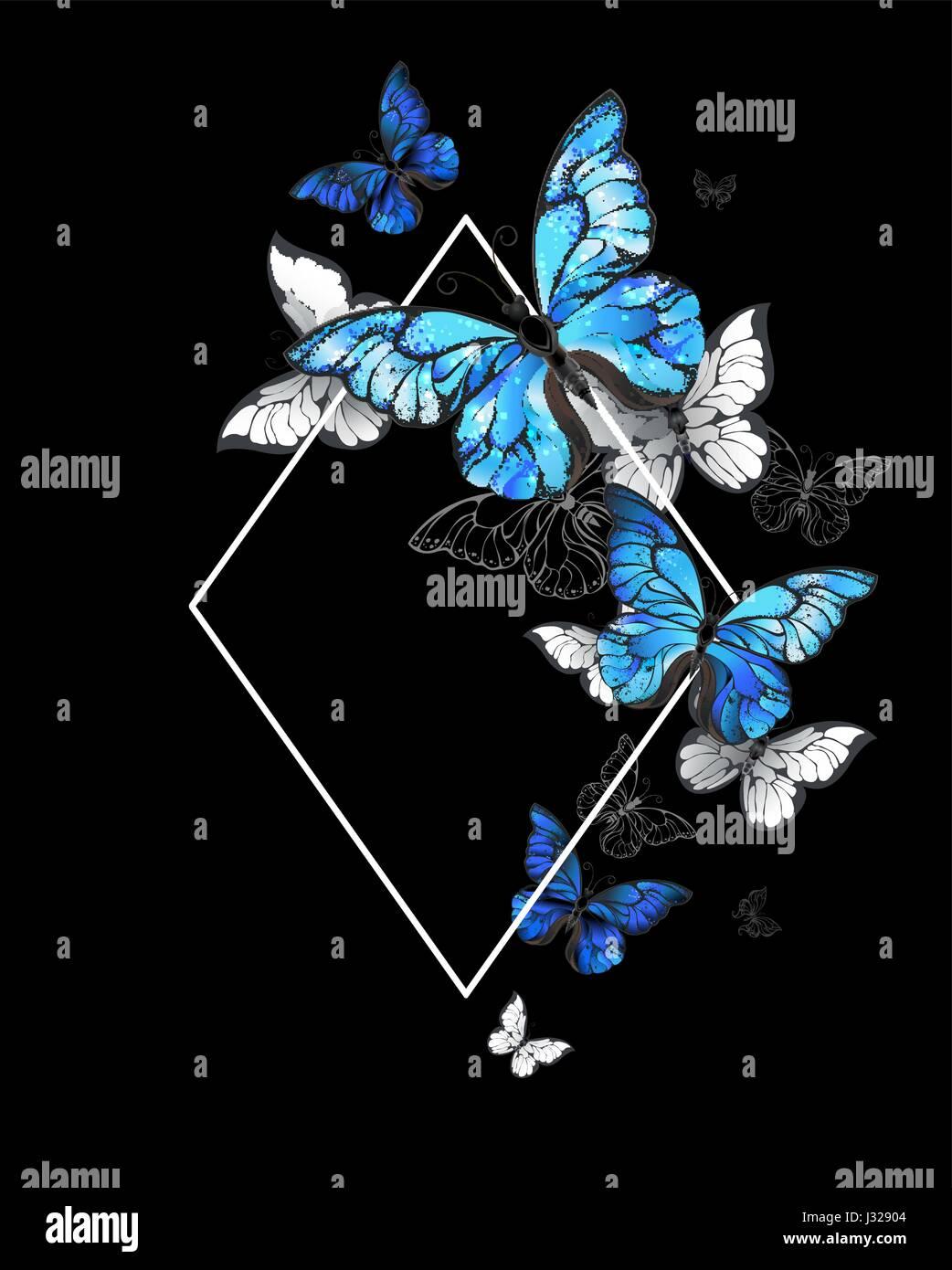Bianco Rombo Sagomato Banner Con Volare Farfalle Morpho Su Uno
