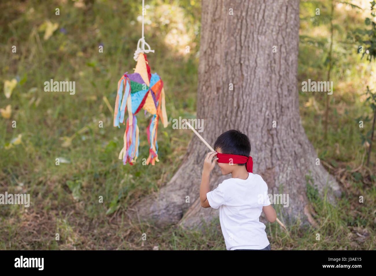 Gli occhi bendati boy colpendo pinata mediante una struttura ad albero nella foresta Immagini Stock