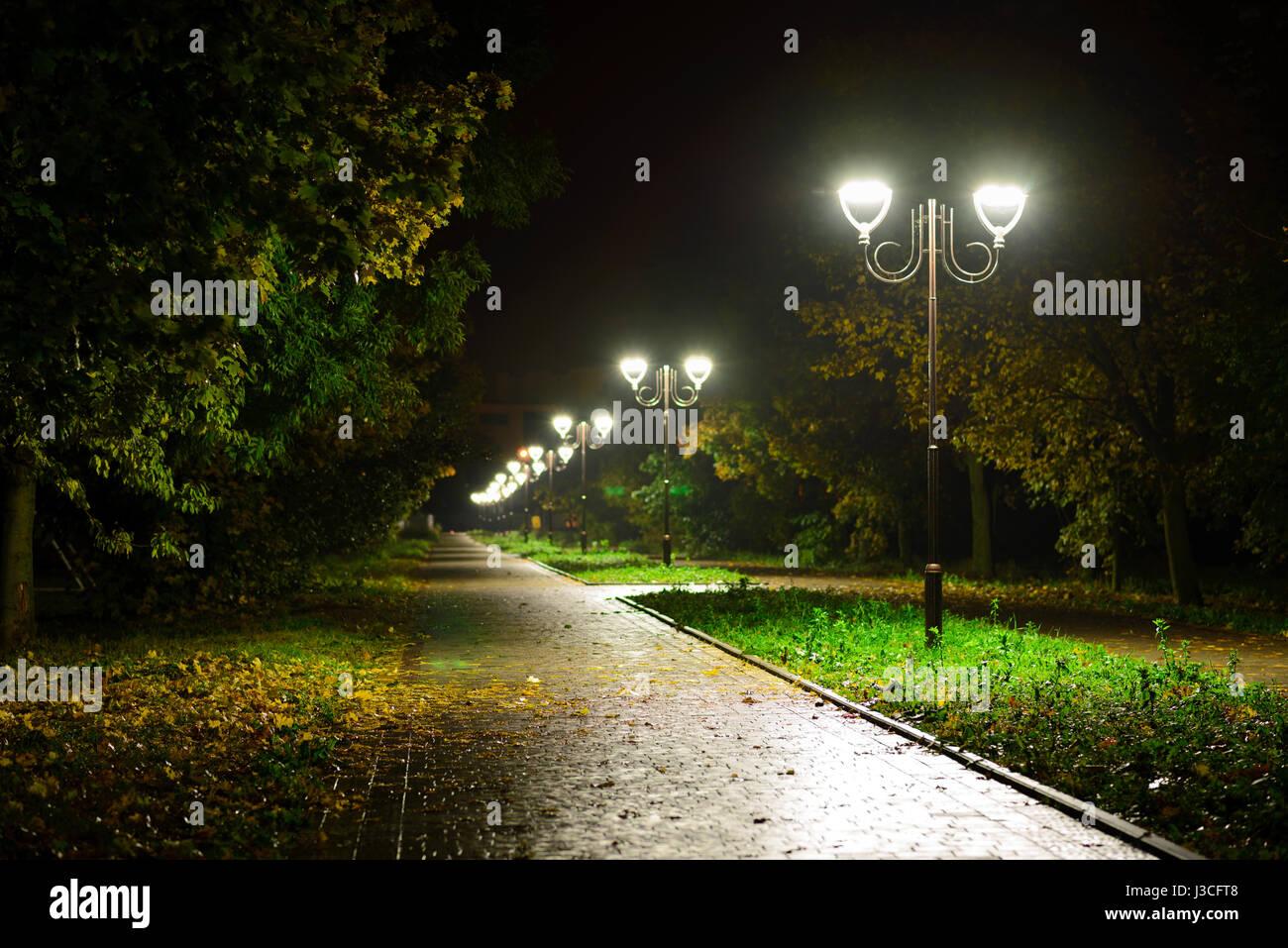 Parco lanterne di notte luci: una vista di un vialetto pedonale