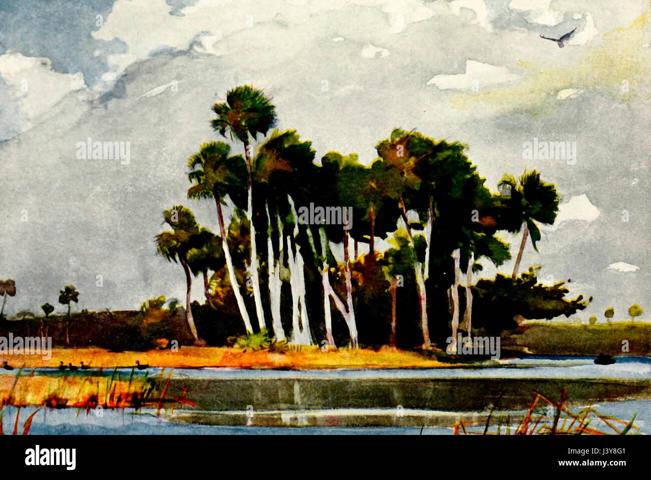 Sul fiume Homossa, Florida - acquerello di Winslow Homer Immagini Stock