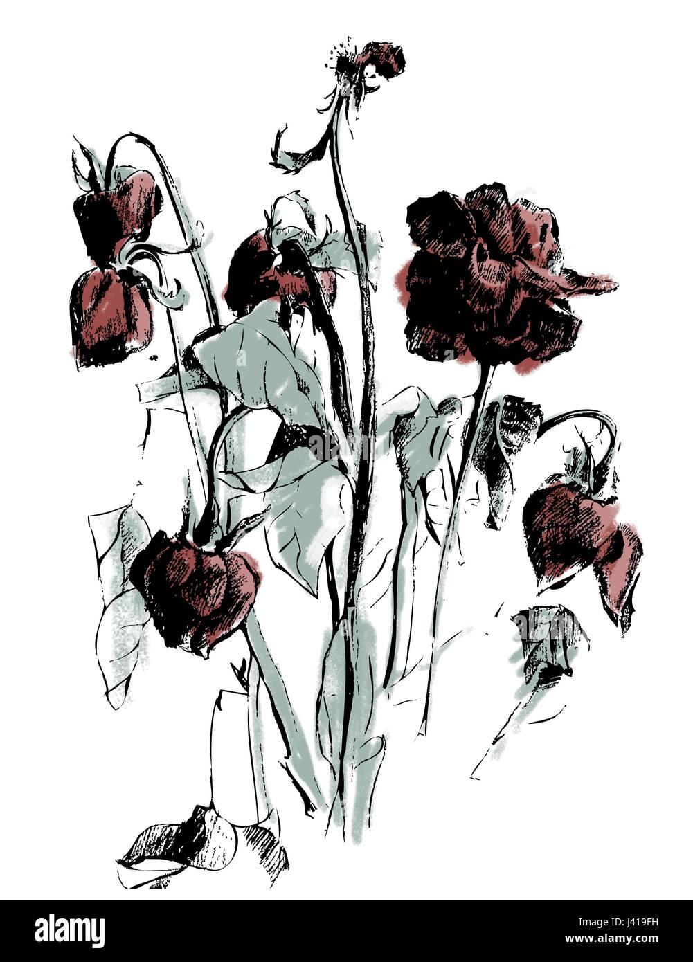 Un Disegno Di Rosa Appassita Illustrazione Vettoriale 140171013 Alamy