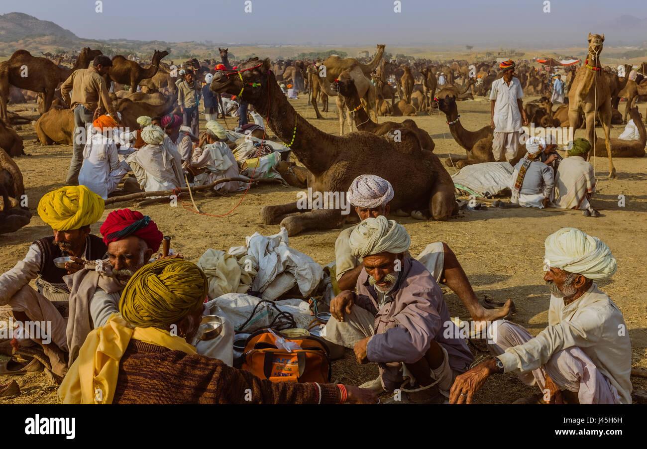 Il cammello tradizionali commercianti negoziare l'acquisto e la vendita di cammelli nel cuore del Thar vicino Immagini Stock
