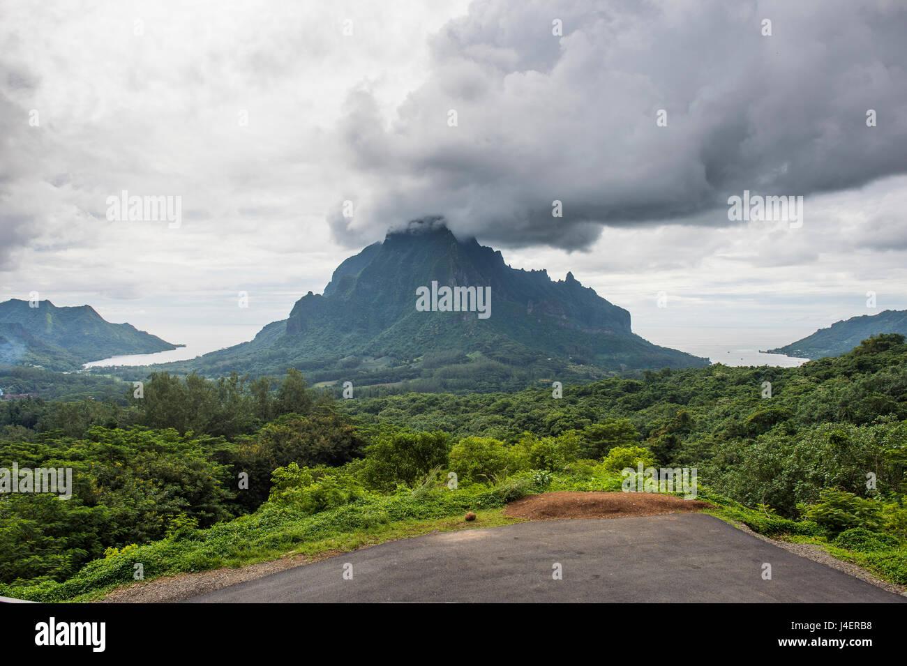 Belvedere si affacciano, Moorea, Isole della Società, Polinesia francese, Pacific Immagini Stock