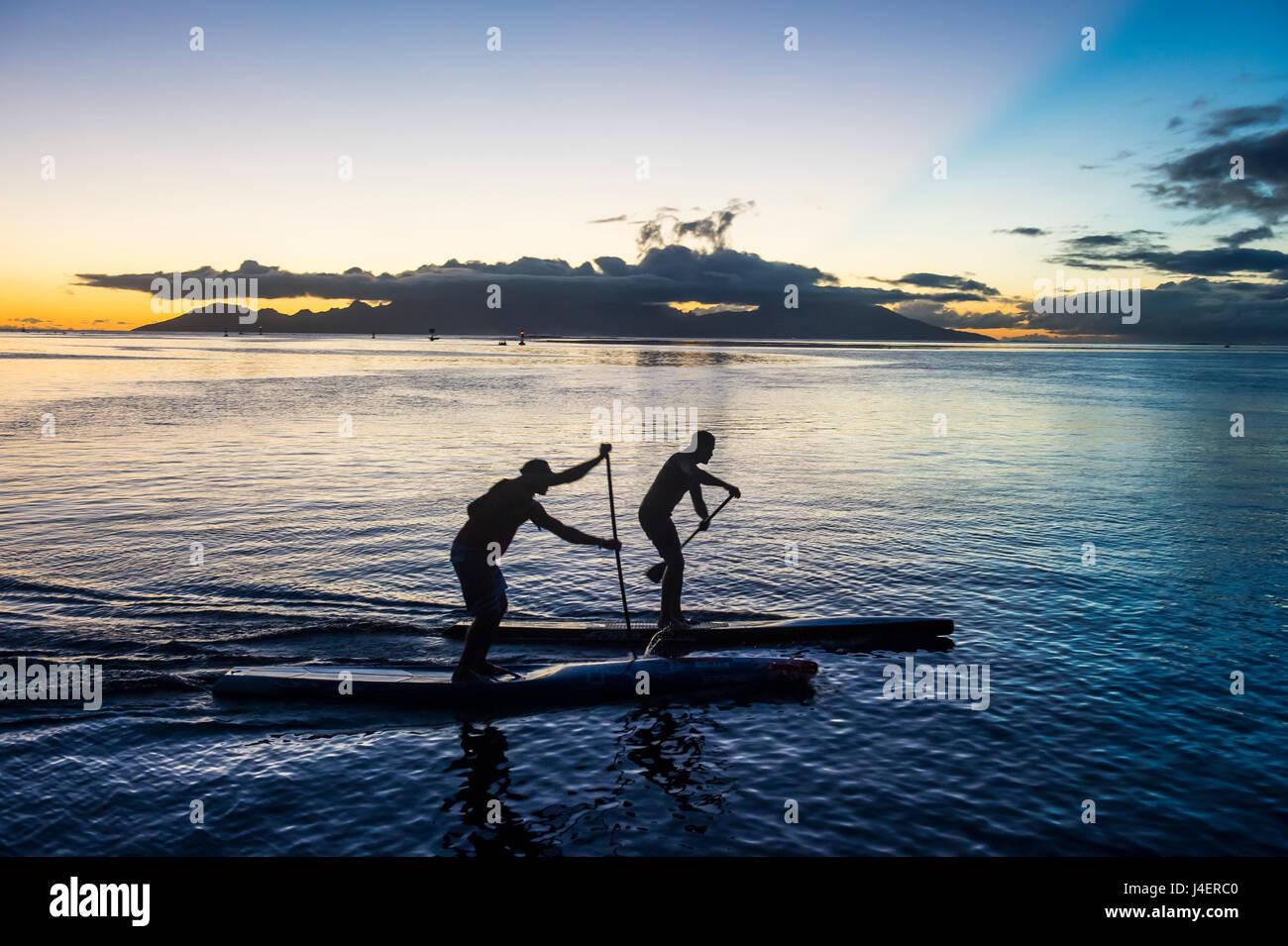 Stand up dei rematori lavorando fuori al tramonto con Moorea in background, Papeete, Tahiti, Isole della Società, Immagini Stock