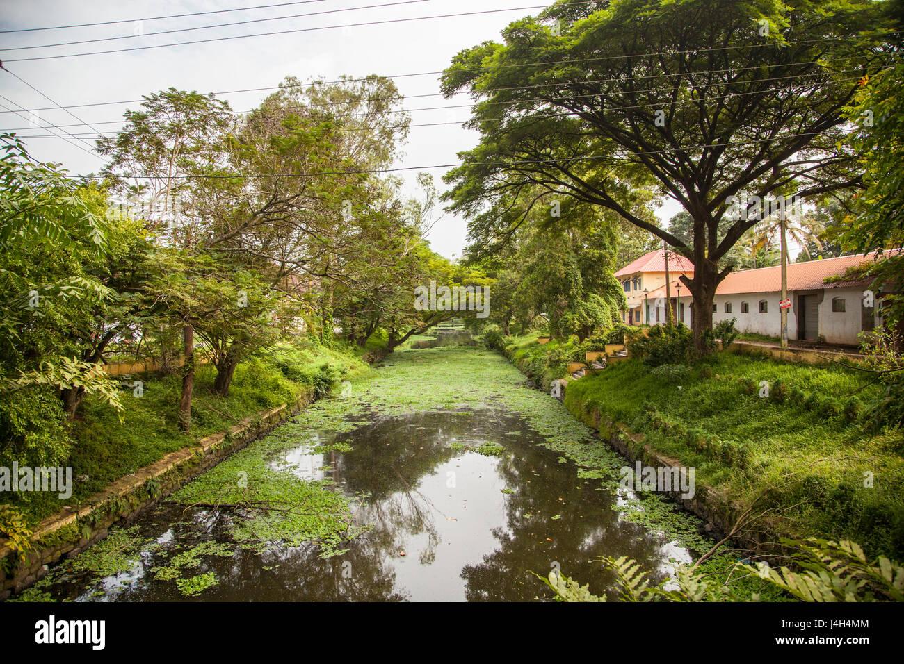 Alleppey conosciuto anche come Alappuzha in Kerala, India è una splendida laguna di acqua stagnante di una Immagini Stock