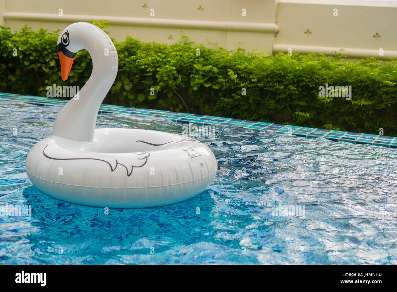 Hotel flamingo beach immagini hotel flamingo beach fotos for Cigno gonfiabile per piscina