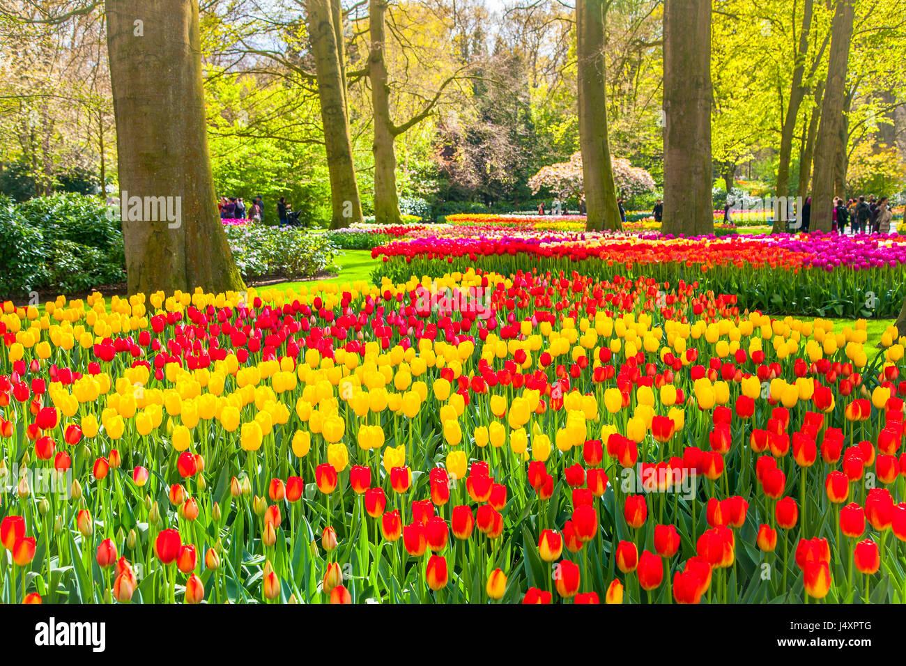 Gg primavera e giardini in fiore in italia giovani genitori