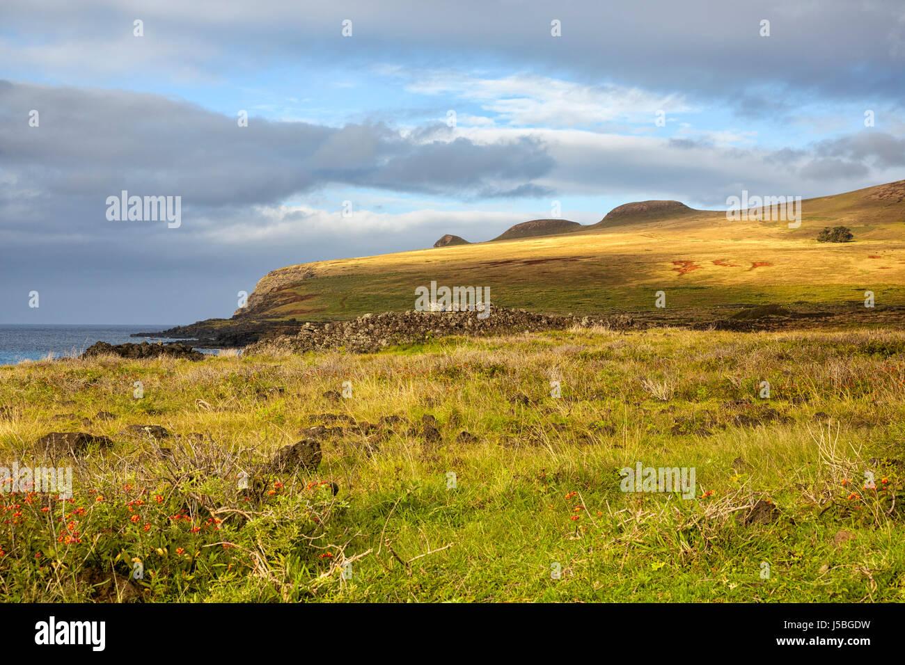 Poike vulcano, l'isola di pasqua, Cile Immagini Stock