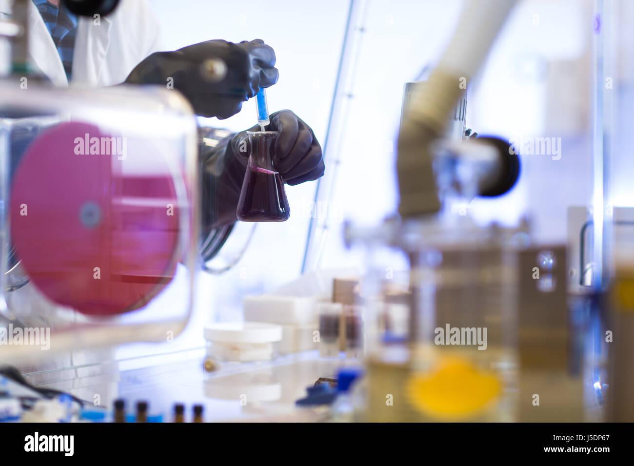 La scienza, la chimica, la tecnologia, la biologia e il concetto di persone - close up di scienziati mani di effettuare Immagini Stock