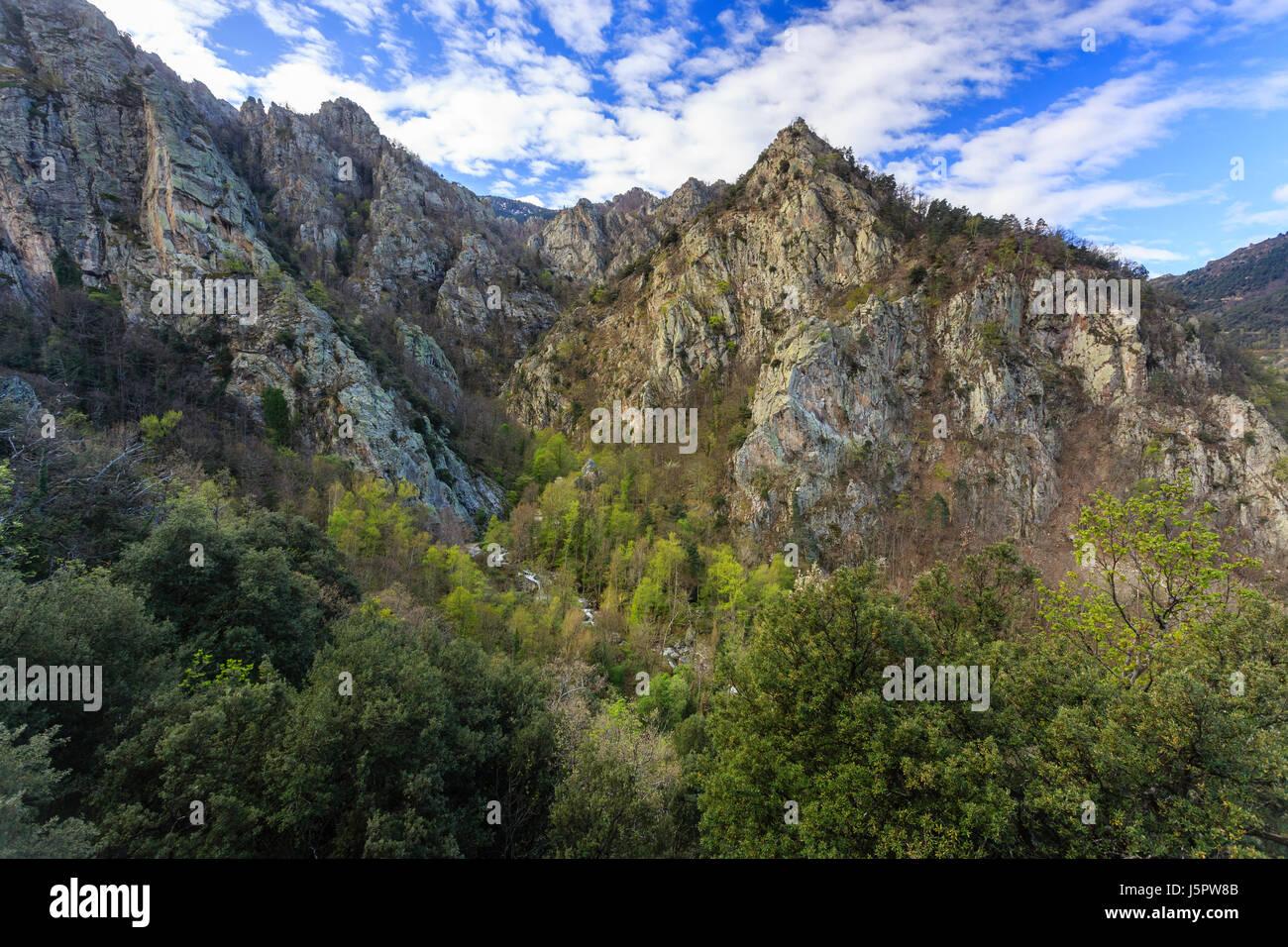 Francia, Pyrénées-Orientales (66), Casteil, la Rivière El Cadi au fond des gorges a proximité Immagini Stock