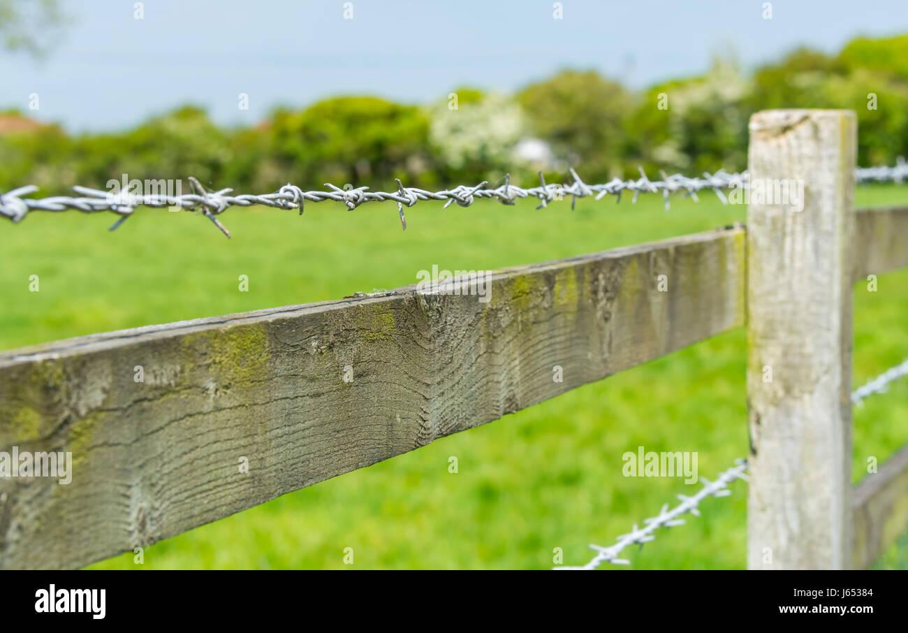 Filo spinato su una staccionata in legno che circonda un campo in campagna. Immagini Stock
