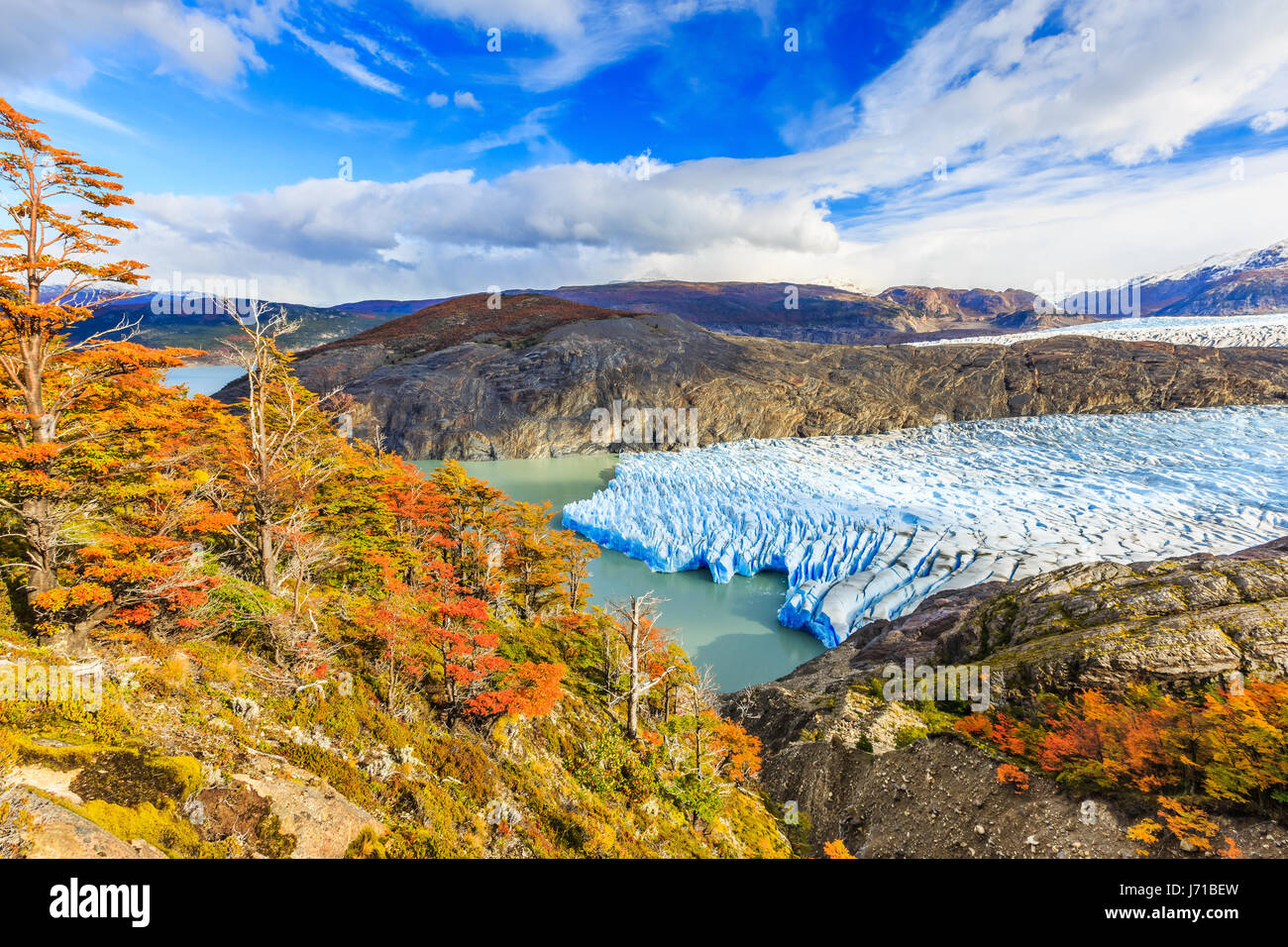 Parco Nazionale di Torres del Paine Cile. Ghiacciaio Grey. Immagini Stock