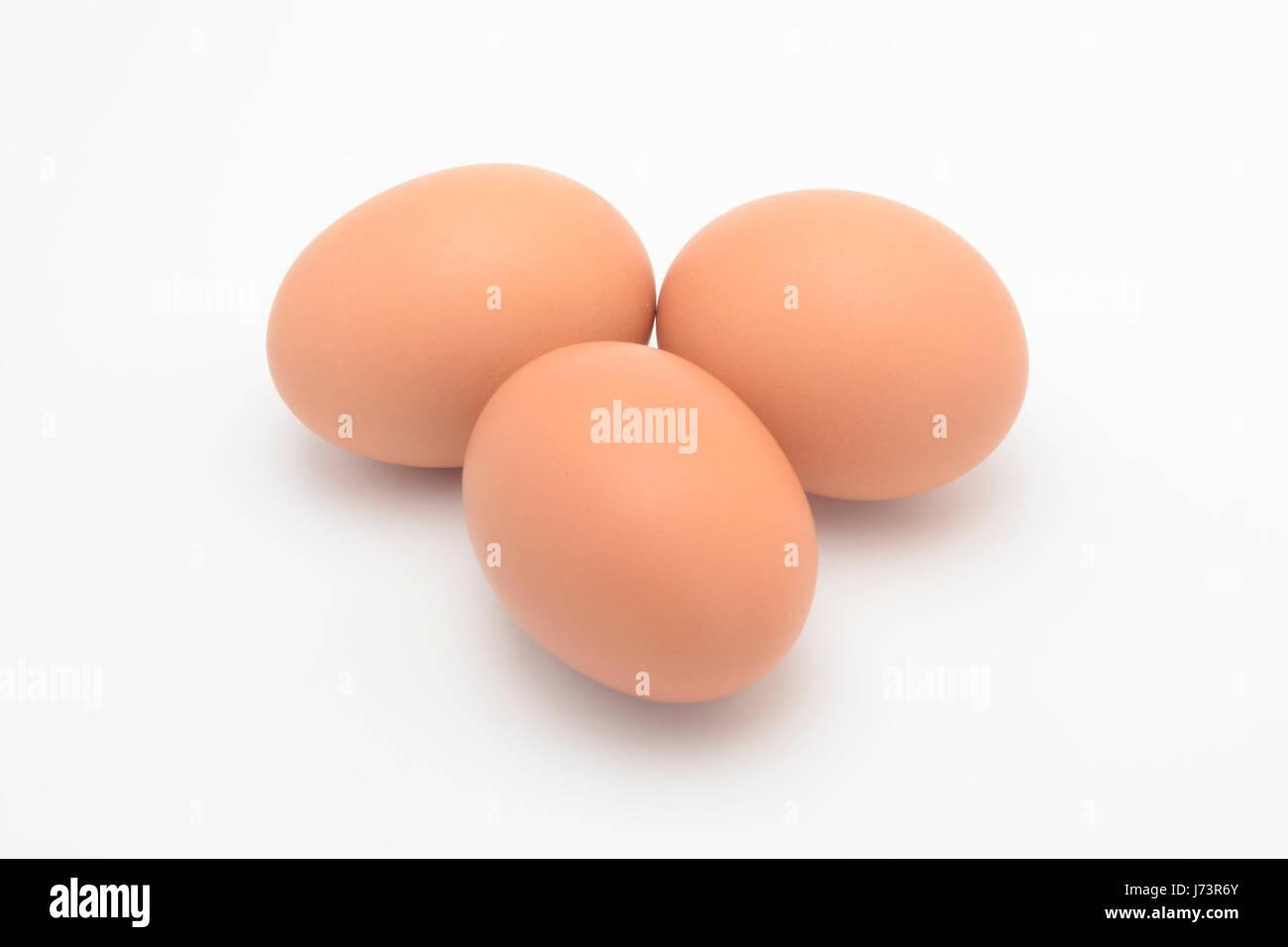 Uovo marrone su sfondo bianco, ingrediente Immagini Stock