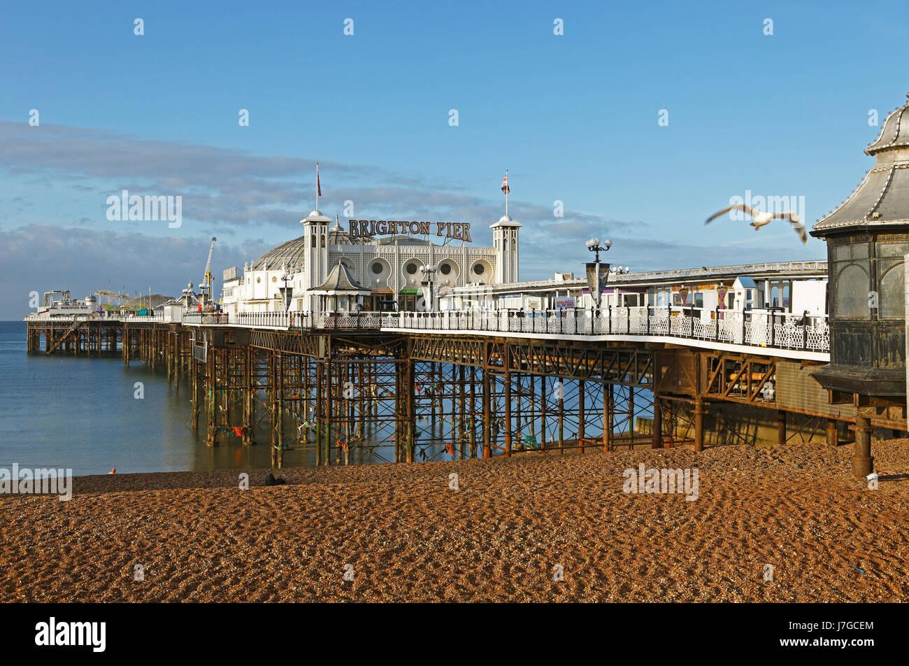 Palazzo di Brighton Pier e Brighton East Sussex, England, Regno Unito Immagini Stock
