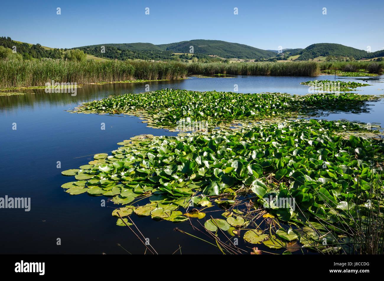 Parco di Colfiorito Umbria Foto Stock