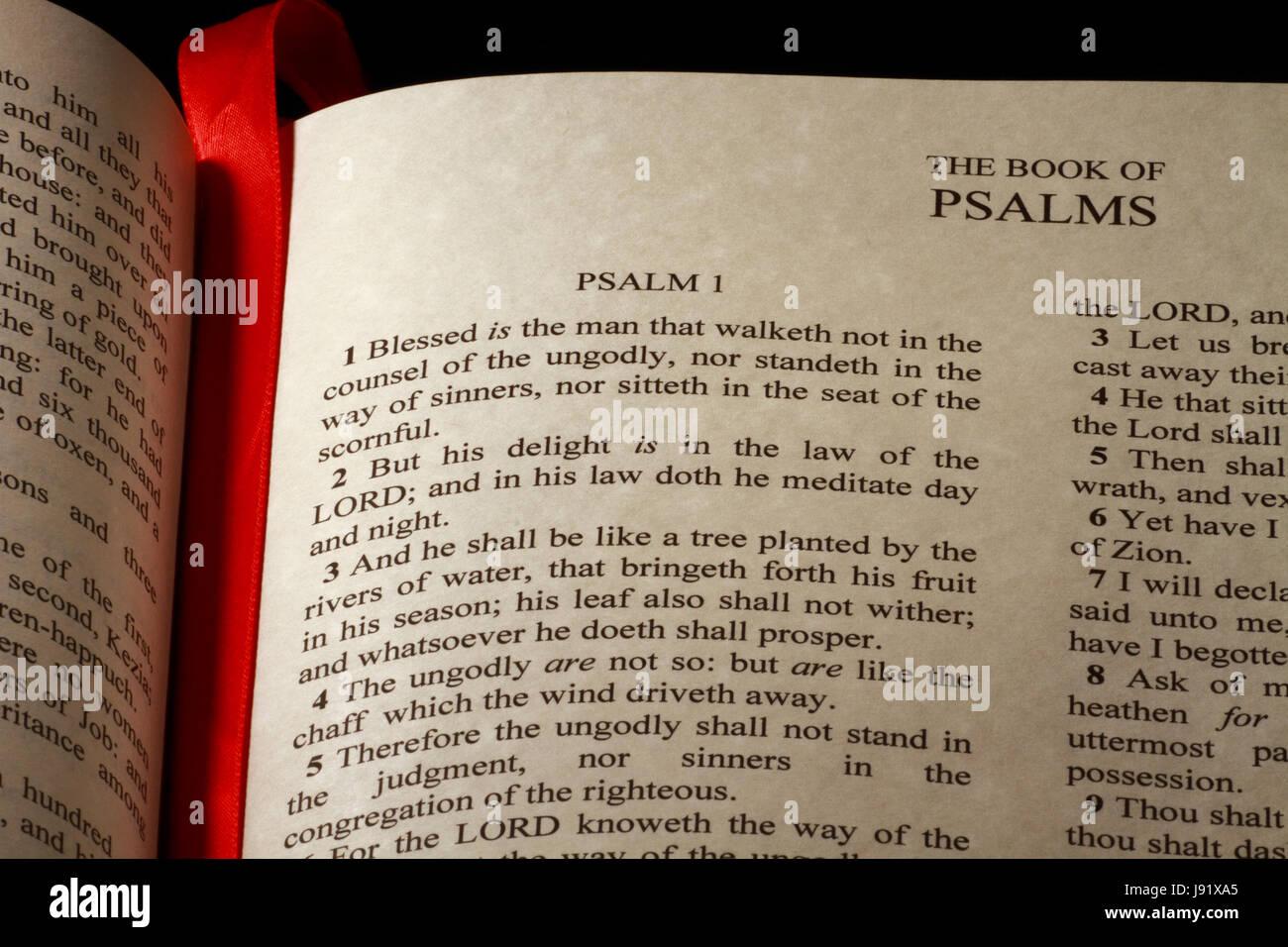 La Credenza Religiosa : La bibbia cristiana il cristianesimo versetto prenota