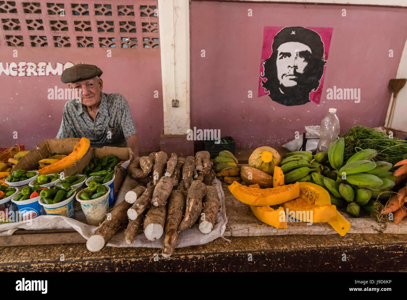Frutta e verdura in vendita dal Venditore privato presso il Mercado Industrial a Cienfuegos, Cuba, West Indies, Foto Stock
