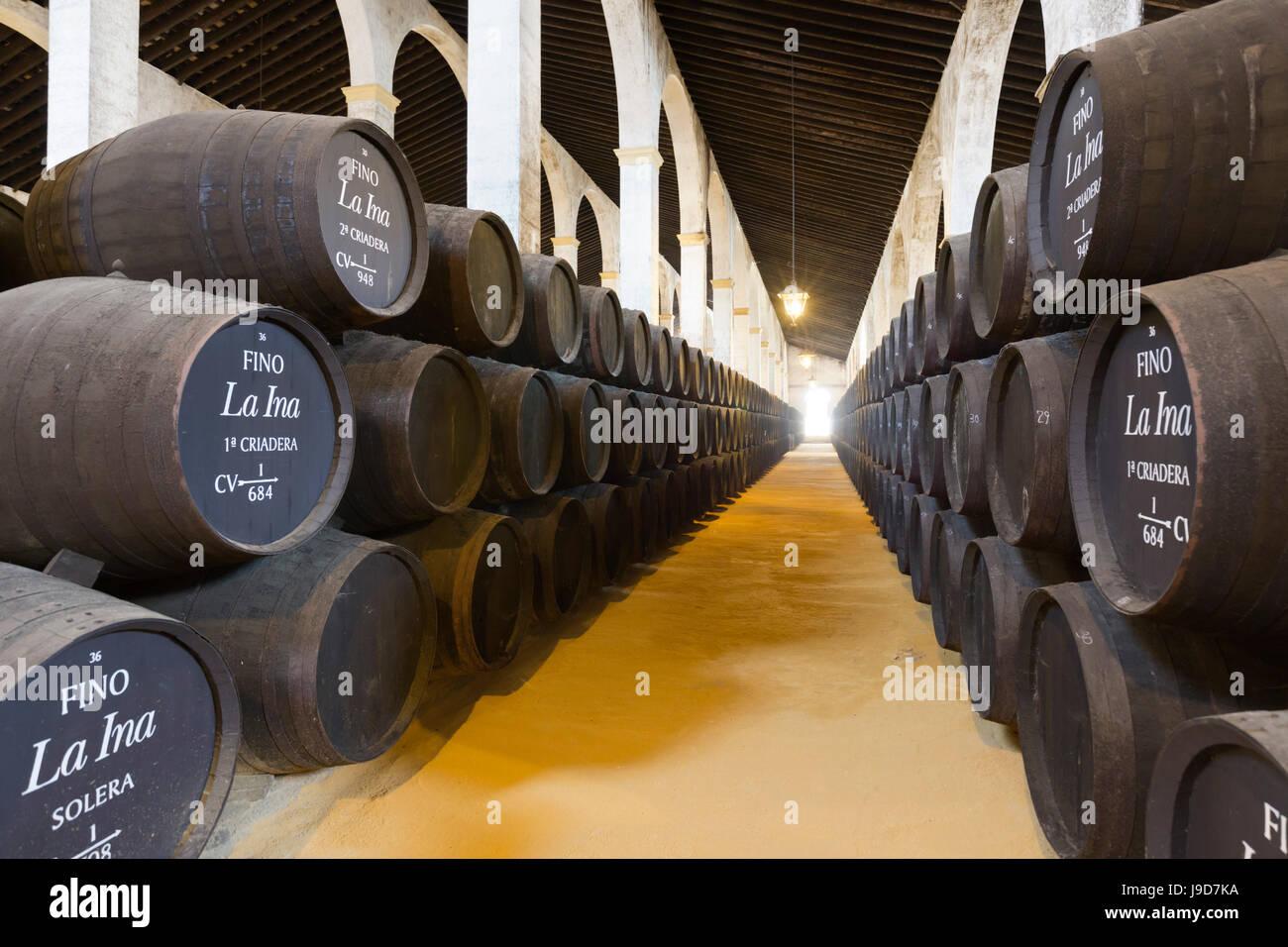 Sherry barili al Lustau Bodega, Jerez de la Frontera, la provincia di Cadiz Cadice, Andalusia, Spagna, Europa Foto Stock